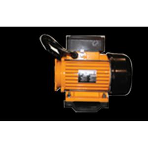 Motor EMG 2HP Dual Speed European w/hard wire cord