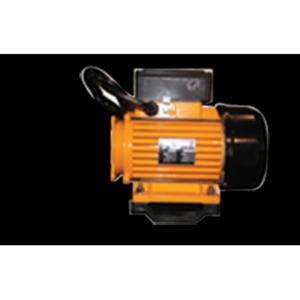 Motor EMG 3HP Single Speed European w/hard wire cord